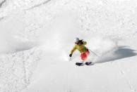 Ski Utah Powder- The Cirque, Snowbird Resort